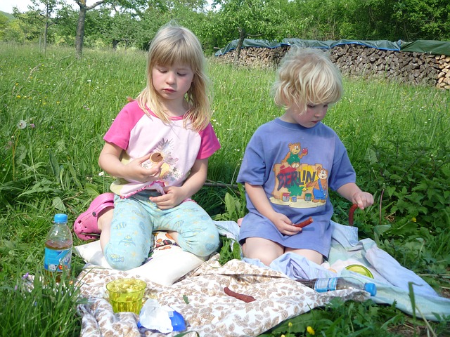 Ideas para un picnic con niños